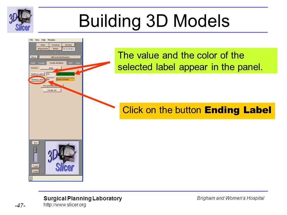 Surgical Planning Laboratory http://www.slicer.org -47- Brigham and Womens Hospital Building 3D Models Click on the button Ending Label The value and