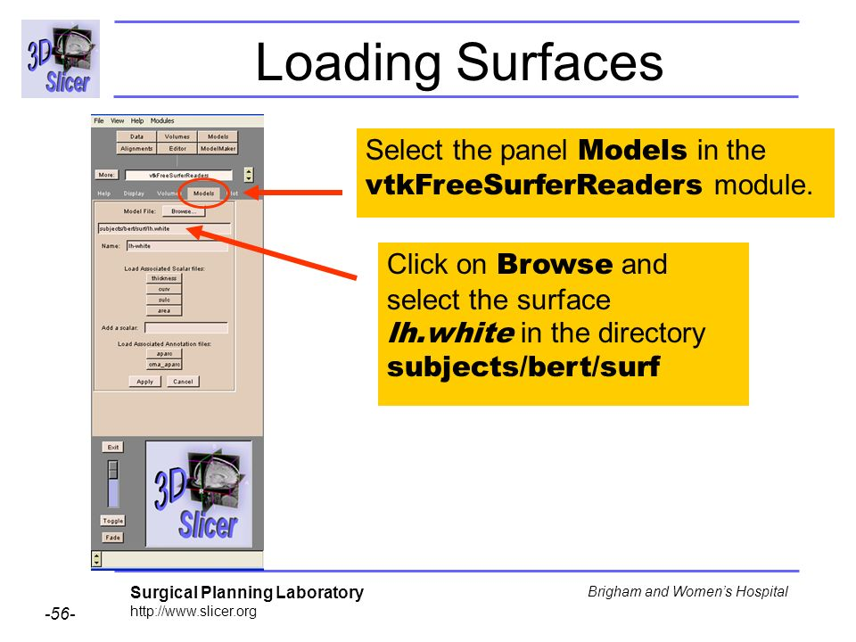 Surgical Planning Laboratory http://www.slicer.org -56- Brigham and Womens Hospital Loading Surfaces Select the panel Models in the vtkFreeSurferReade