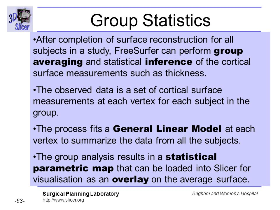 Surgical Planning Laboratory http://www.slicer.org -63- Brigham and Womens Hospital Group Statistics After completion of surface reconstruction for al