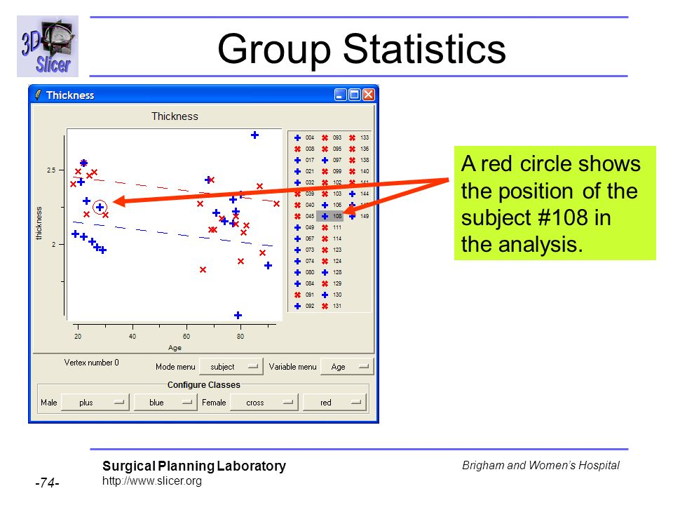 Surgical Planning Laboratory http://www.slicer.org -74- Brigham and Womens Hospital Group Statistics A red circle shows the position of the subject #1