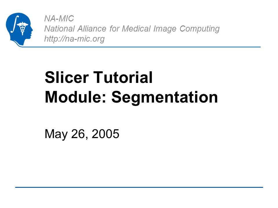 NA-MIC National Alliance for Medical Image Computing http://na-mic.org Slicer Tutorial Module: Segmentation May 26, 2005