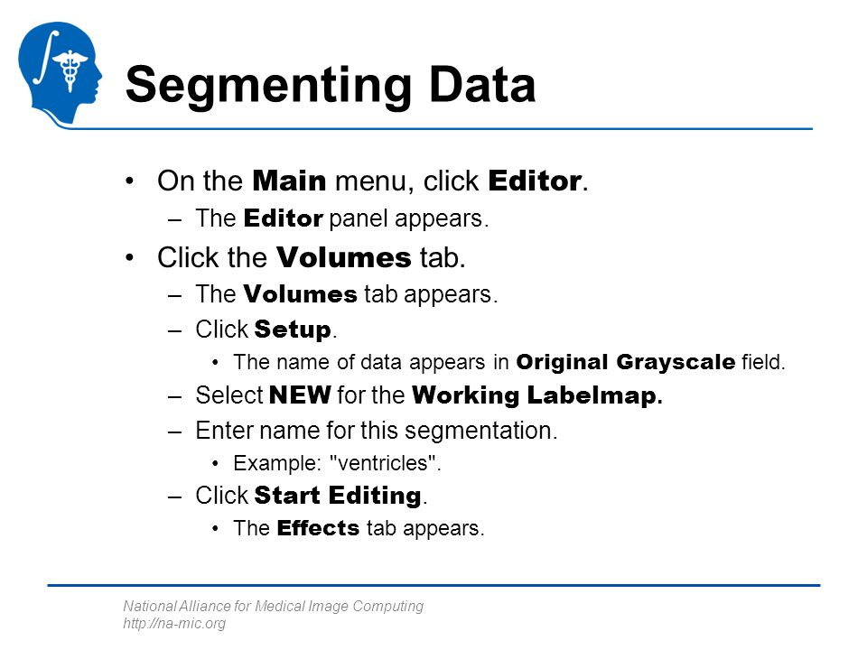 National Alliance for Medical Image Computing http://na-mic.org Segmenting Data On the Main menu, click Editor.