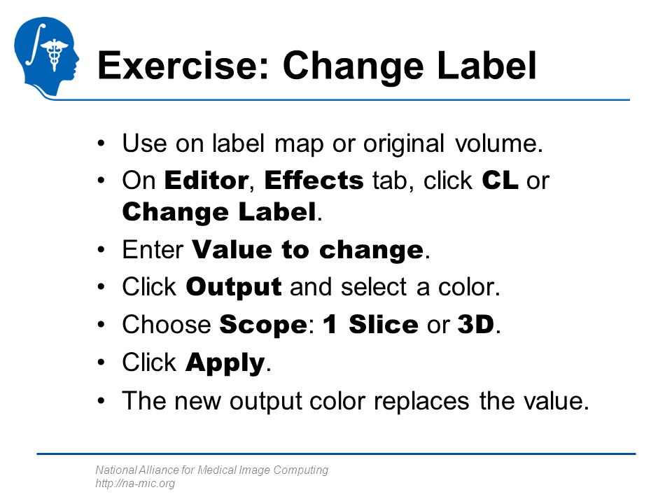 National Alliance for Medical Image Computing http://na-mic.org Exercise: Change Label Use on label map or original volume.