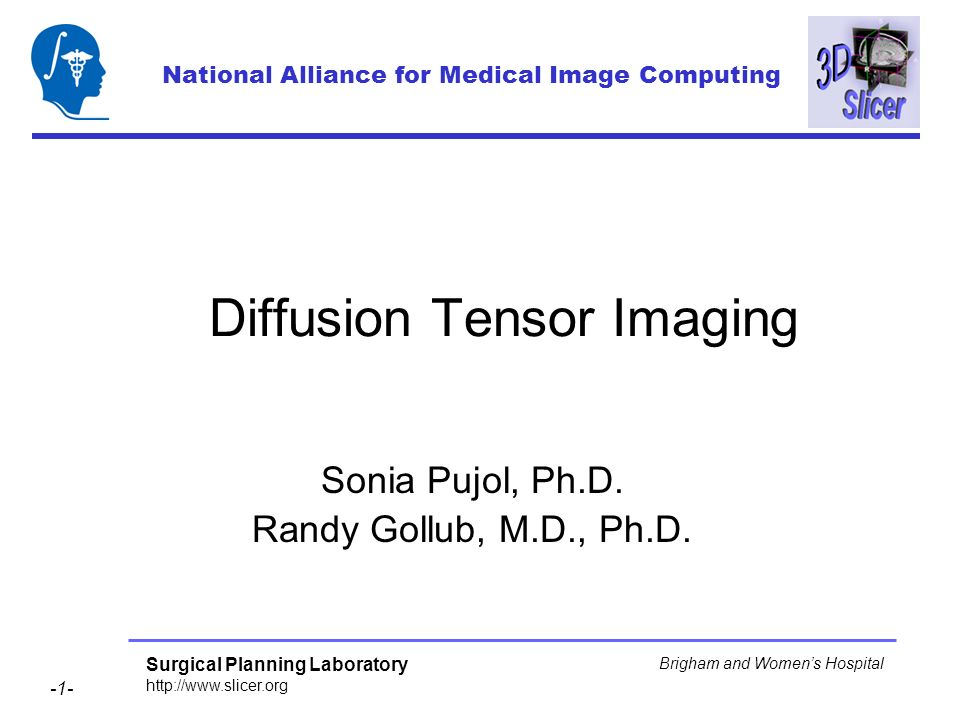 Surgical Planning Laboratory http://www.slicer.org -1- Brigham and Womens Hospital Diffusion Tensor Imaging Sonia Pujol, Ph.D. Randy Gollub, M.D., Ph.