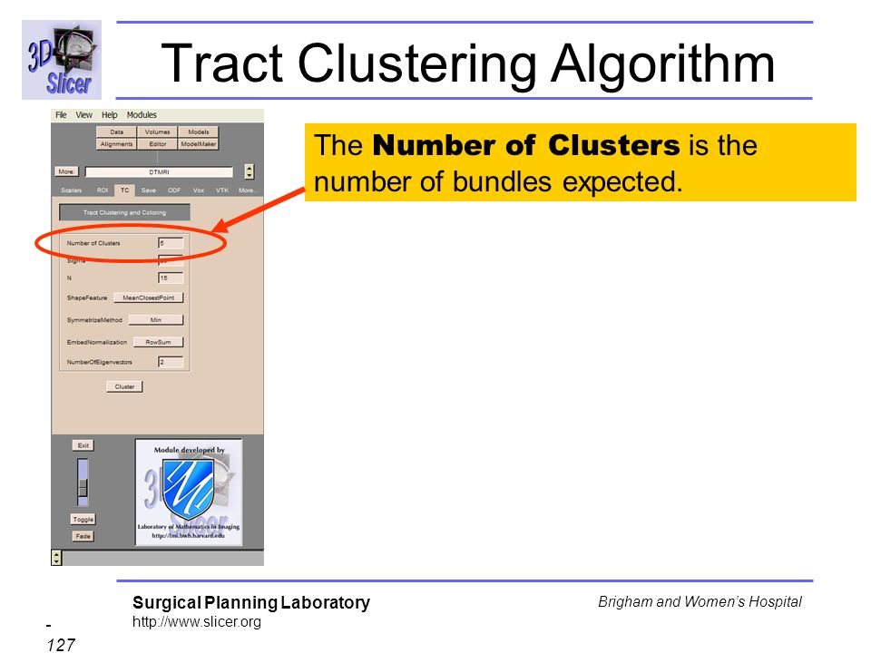 Surgical Planning Laboratory http://www.slicer.org - 127 - Brigham and Womens Hospital Tract Clustering Algorithm The Number of Clusters is the number of bundles expected.