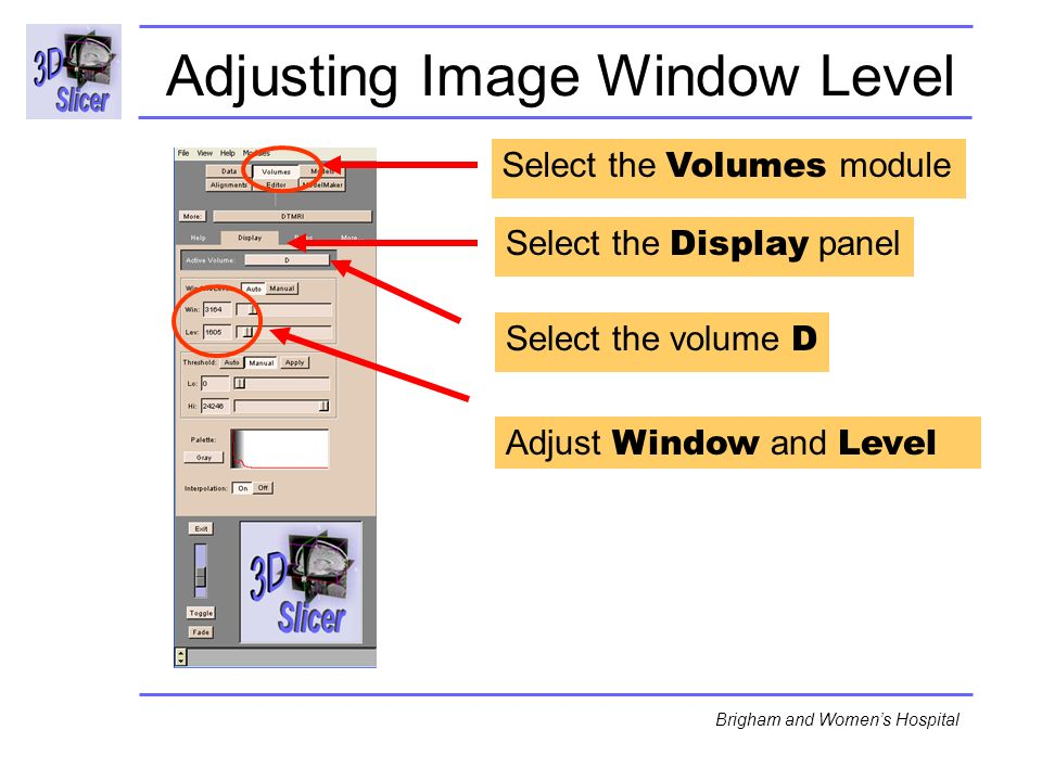 Surgical Planning Laboratory http://www.slicer.org -47- Brigham and Womens Hospital Adjusting Image Window Level Select the Volumes module Adjust Window and Level Select the volume D Select the Display panel