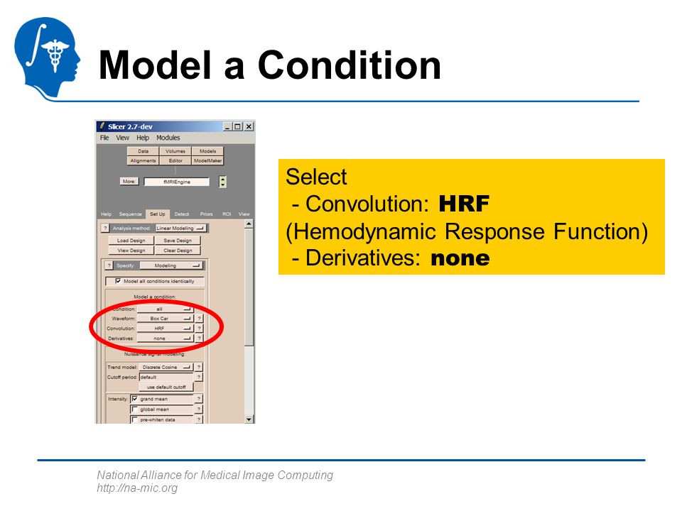 National Alliance for Medical Image Computing http://na-mic.org Model a Condition Select - Convolution: HRF (Hemodynamic Response Function) - Derivati