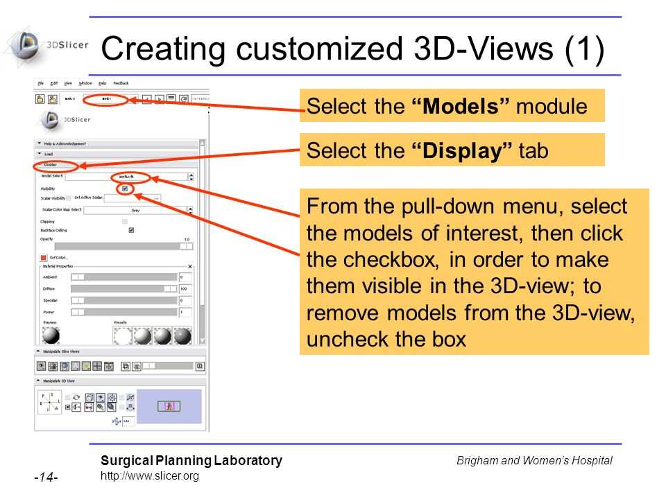Surgical Planning Laboratory http://www.slicer.org -14- Brigham and Womens Hospital Creating customized 3D-Views (1) Select the Models module Select the Display tab From the pull-down menu, select the models of interest, then click the checkbox, in order to make them visible in the 3D-view; to remove models from the 3D-view, uncheck the box