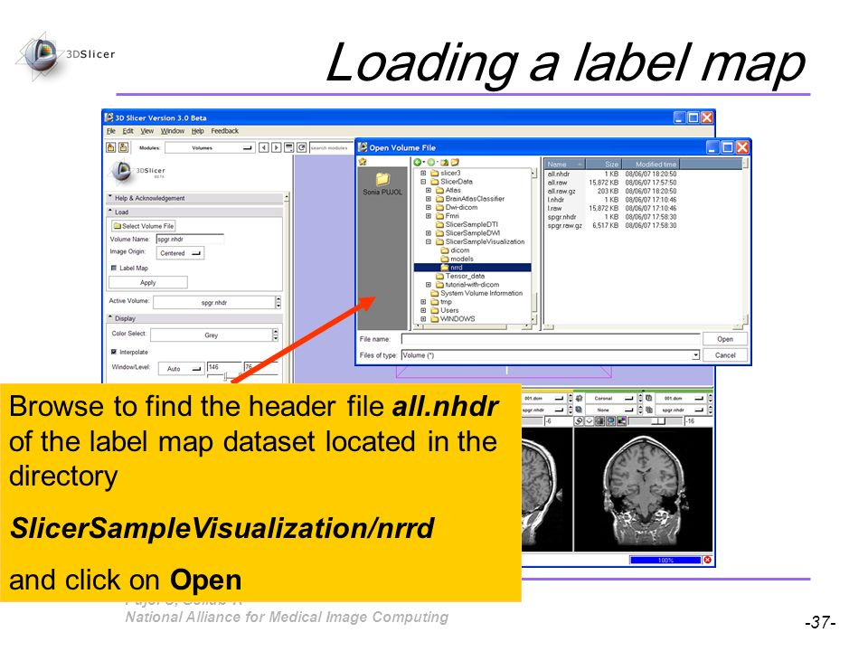 Pujol S, Gollub R -37- National Alliance for Medical Image Computing Loading a label map Browse to find the header file all.nhdr of the label map dataset located in the directory SlicerSampleVisualization/nrrd and click on Open
