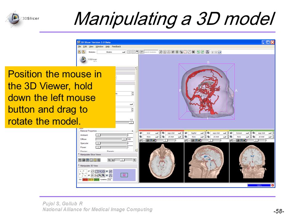 Pujol S, Gollub R -58- National Alliance for Medical Image Computing Manipulating a 3D model Position the mouse in the 3D Viewer, hold down the left mouse button and drag to rotate the model.