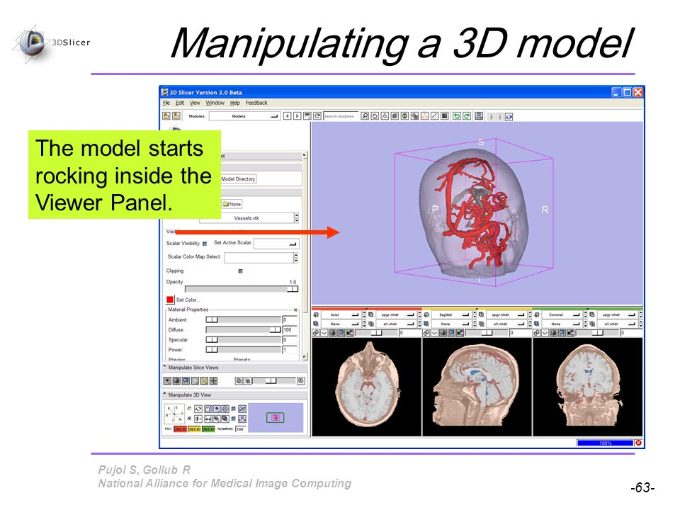 Pujol S, Gollub R -63- National Alliance for Medical Image Computing Manipulating a 3D model The model starts rocking inside the Viewer Panel.