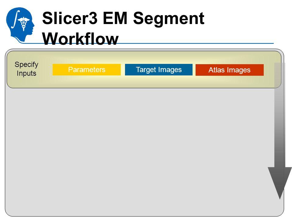 National Alliance for Medical Image Computing http://na-mic.org Specify Inputs Parameters Target Images Atlas Images Slicer3 EM Segment Workflow