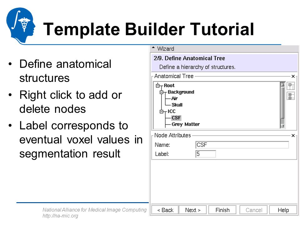 National Alliance for Medical Image Computing http://na-mic.org Template Builder Tutorial Define anatomical structures Right click to add or delete nodes Label corresponds to eventual voxel values in segmentation result