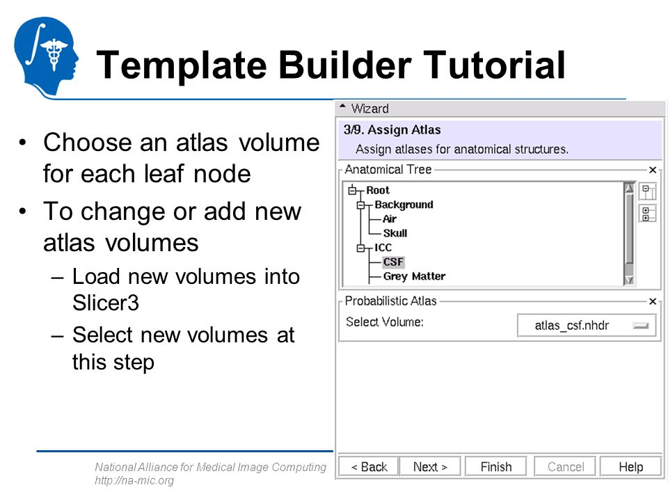 National Alliance for Medical Image Computing http://na-mic.org Template Builder Tutorial Choose an atlas volume for each leaf node To change or add new atlas volumes –Load new volumes into Slicer3 –Select new volumes at this step