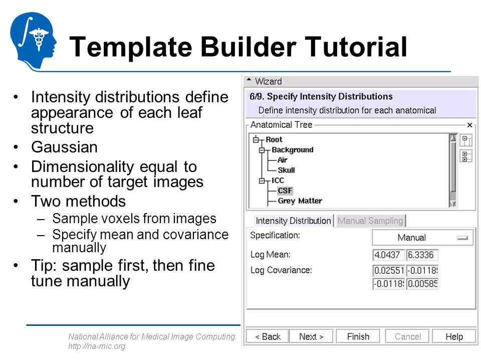 National Alliance for Medical Image Computing http://na-mic.org Template Builder Tutorial Intensity distributions define appearance of each leaf struc