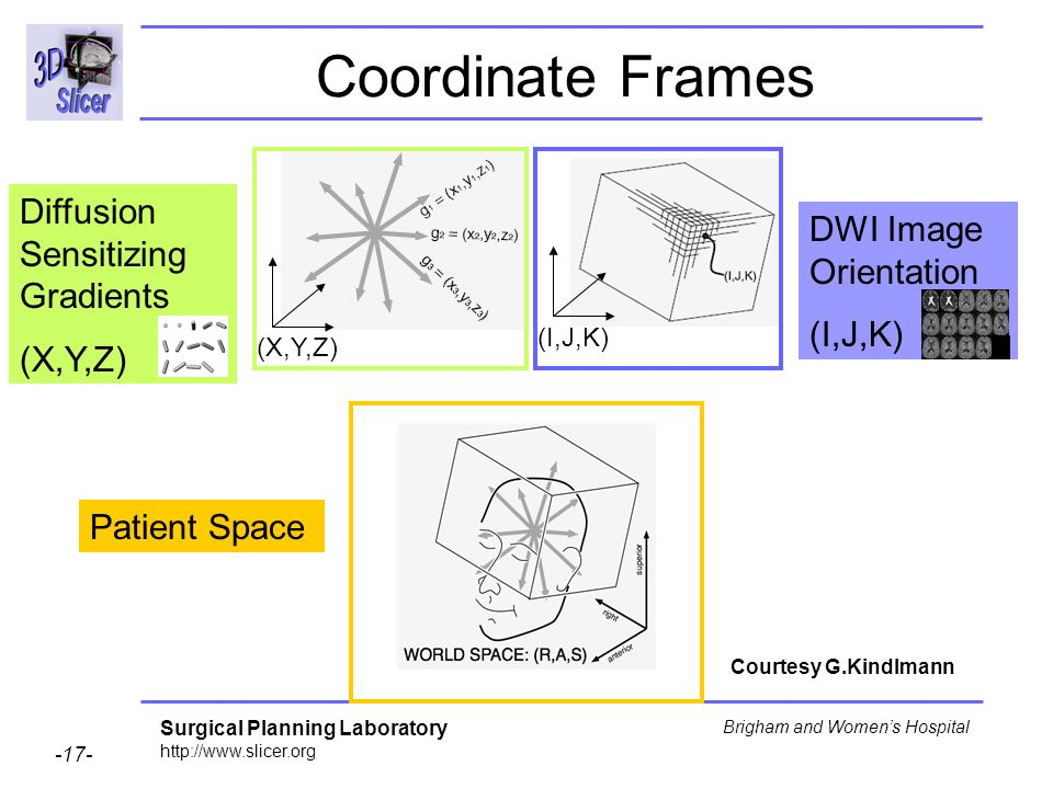 Surgical Planning Laboratory http://www.slicer.org -17- Brigham and Womens Hospital Coordinate Frames DWI Image Orientation (I,J,K) Diffusion Sensitizing Gradients (X,Y,Z) (I,J,K) Patient Space Courtesy G.Kindlmann
