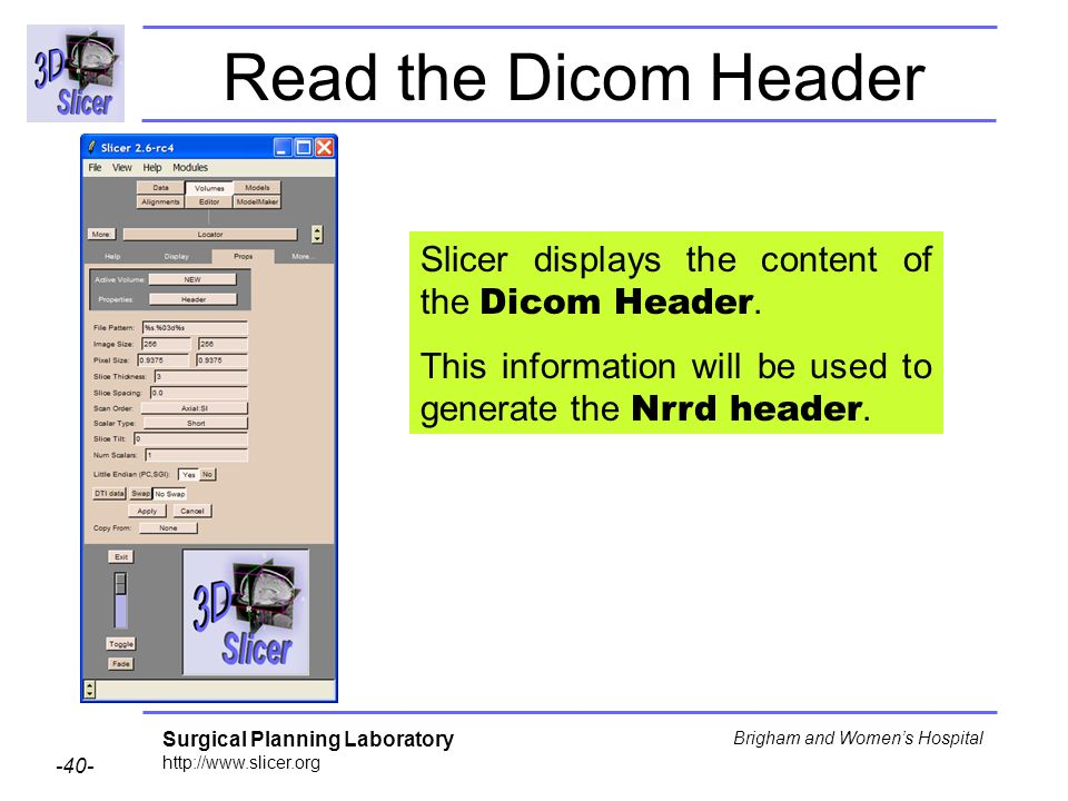 Surgical Planning Laboratory http://www.slicer.org -40- Brigham and Womens Hospital Slicer displays the content of the Dicom Header.