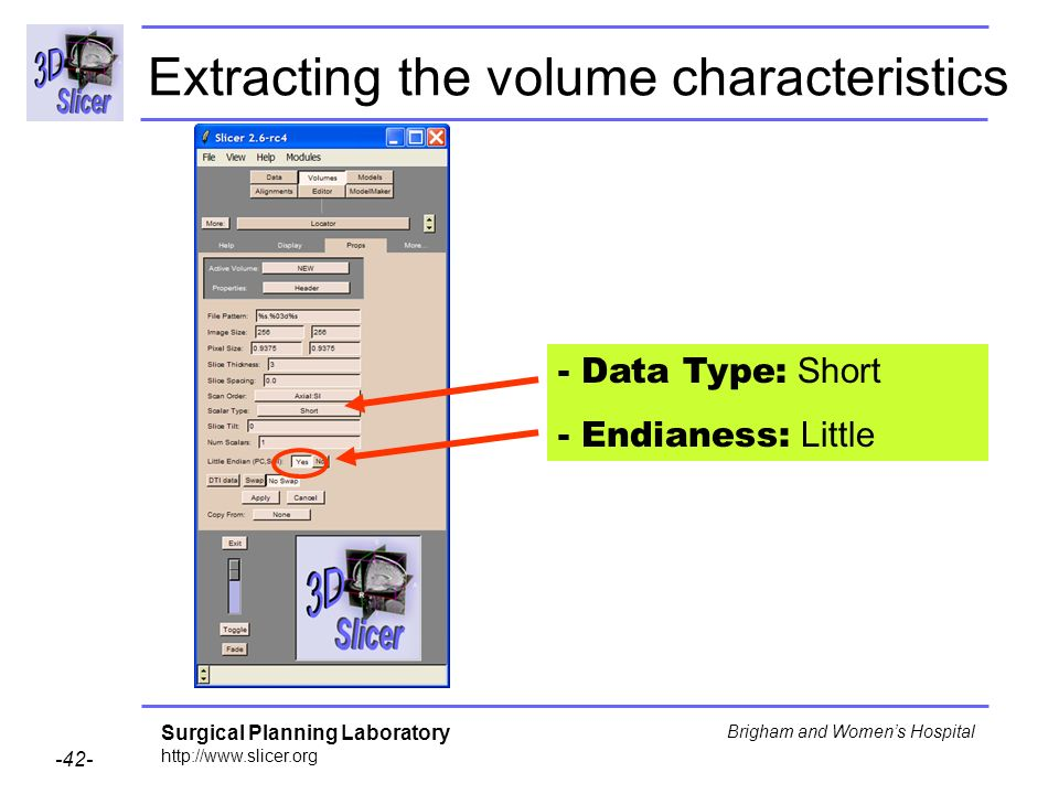 Surgical Planning Laboratory http://www.slicer.org -42- Brigham and Womens Hospital - Data Type: Short - Endianess: Little Extracting the volume characteristics