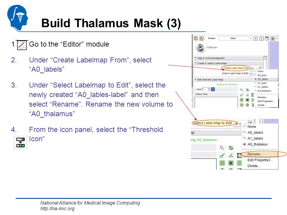 National Alliance for Medical Image Computing http://na-mic.org Build Thalamus Mask (3) 1.Go to the Editor module 2.Under Create Labelmap From, select A0_labels 3.Under Select Labelmap to Edit, select the newly created A0_lables-label and then select Rename.