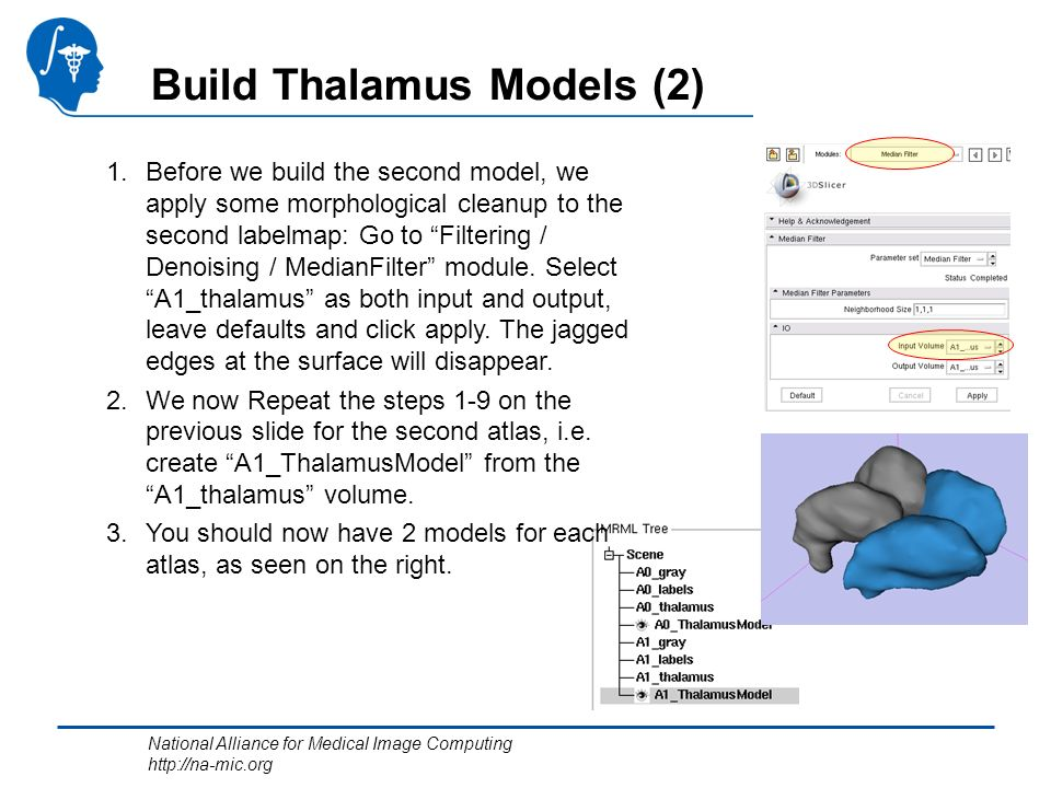 National Alliance for Medical Image Computing http://na-mic.org Build Thalamus Models (2) 1.Before we build the second model, we apply some morphological cleanup to the second labelmap: Go to Filtering / Denoising / MedianFilter module.