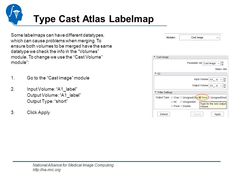 National Alliance for Medical Image Computing http://na-mic.org Type Cast Atlas Labelmap 1.Go to the Cast Image module 2.Input Volume: A1_label Output Volume: A1_label Output Type: short 3.Click Apply Some labelmaps can have different datatypes, which can cause problems when merging.