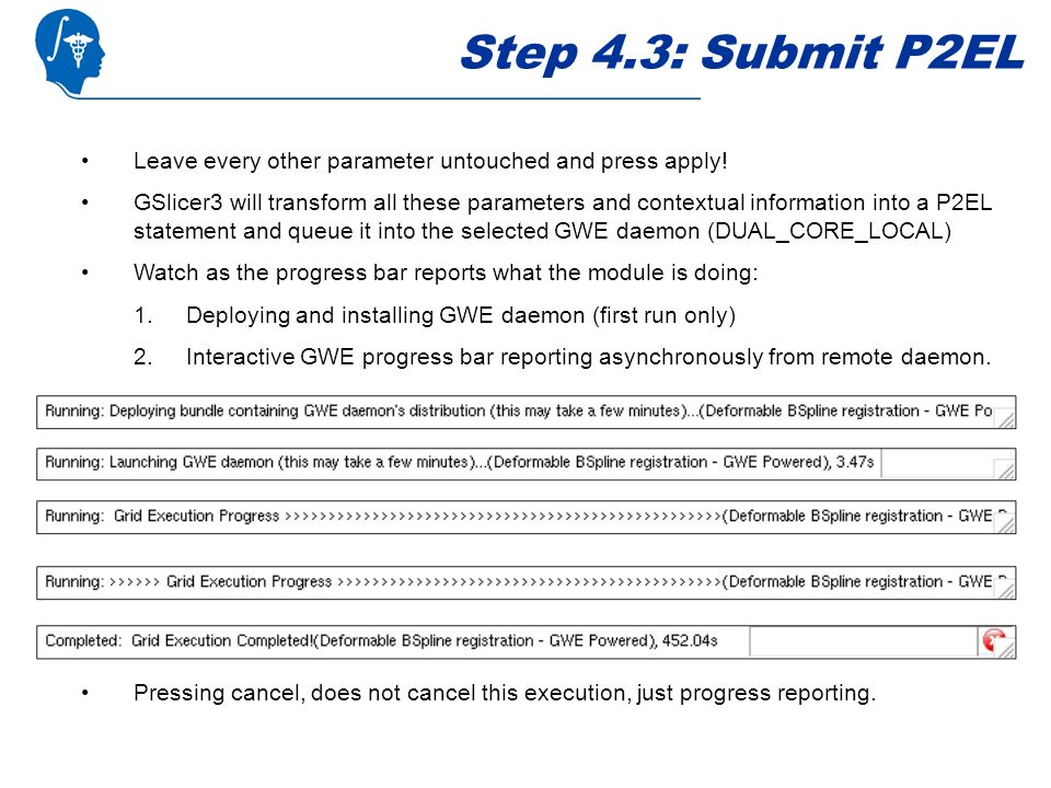 Step 4.3: Submit P2EL Leave every other parameter untouched and press apply.