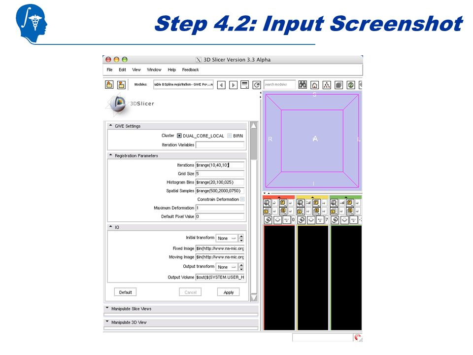 Step 4.2: Input Screenshot