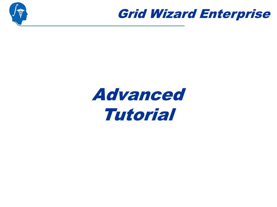 Grid Wizard Enterprise Advanced Tutorial