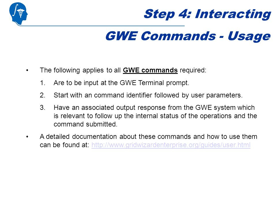 Step 4: Interacting GWE Commands - Usage The following applies to all GWE commands required: 1.Are to be input at the GWE Terminal prompt.