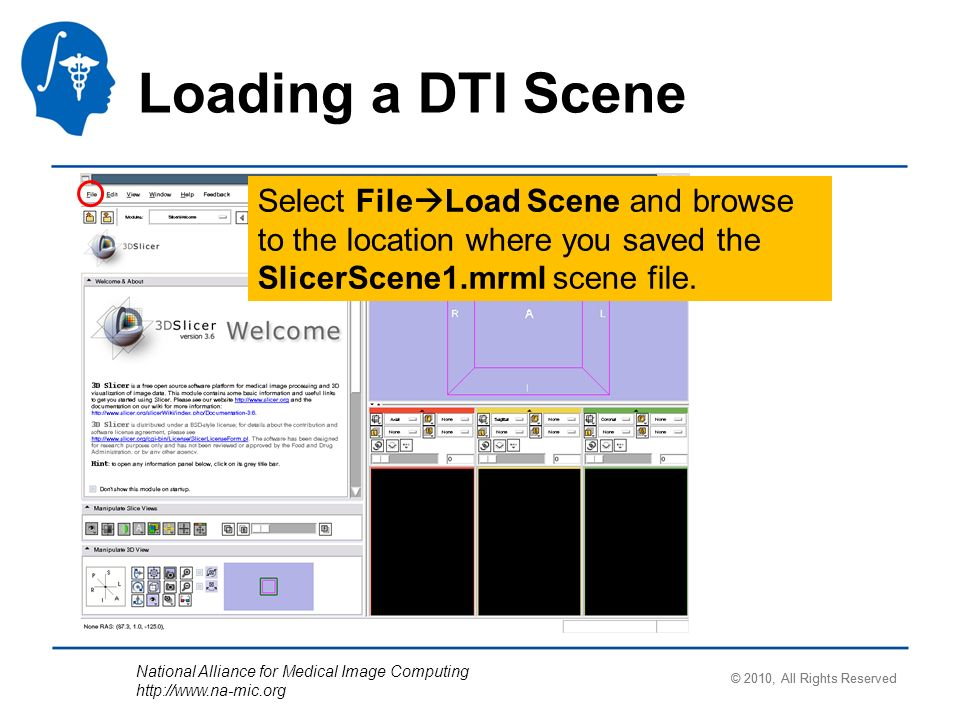 National Alliance for Medical Image Computing   Loading a DTI Scene Select File Load Scene and browse to the location where you saved the SlicerScene1.mrml scene file.