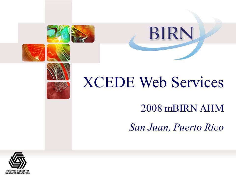 XCEDE Web Services 2008 mBIRN AHM San Juan, Puerto Rico