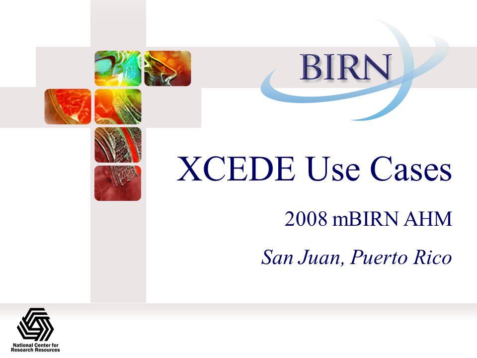 XCEDE Use Cases 2008 mBIRN AHM San Juan, Puerto Rico