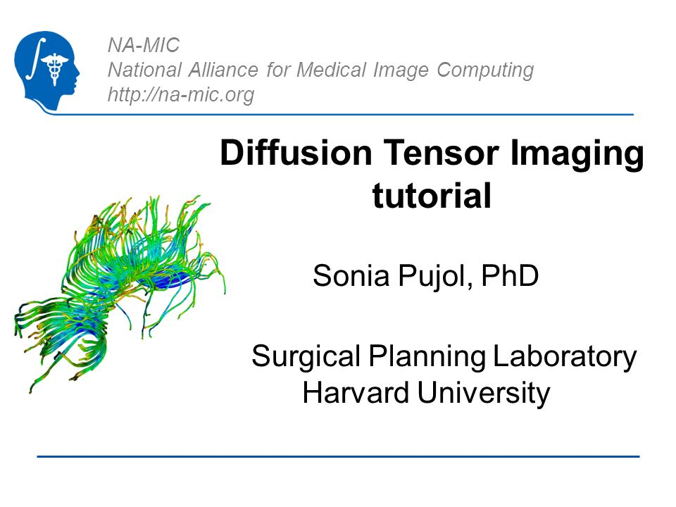 National Alliance for Medical Image Computing http://na-mic.org © 2010, ARR http://na-mic.org Diffusion Tensor Imaging Tutorial, S.Pujol, PhD Tensor Estimation Output DTI Volume is the volume of estimated tensors Output Baseline Volume is the Baseline volume Output Threshold Mask is the tensor mask (blue)