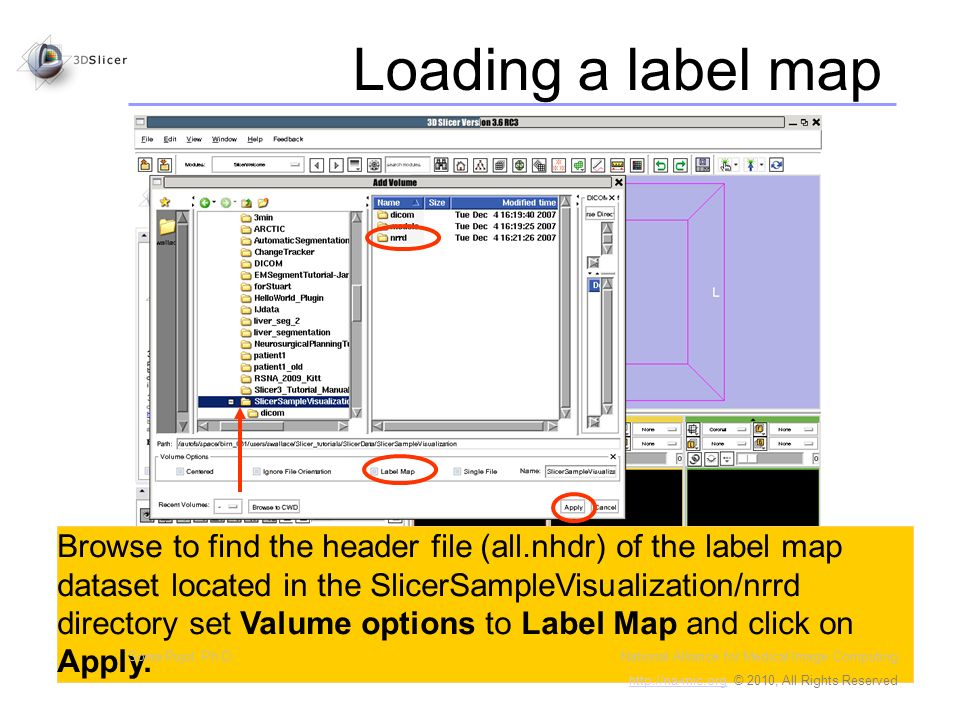 Browse to find the header file (all.nhdr) of the label map dataset located in the SlicerSampleVisualization/nrrd directory set Valume options to Label Map and click on Apply.