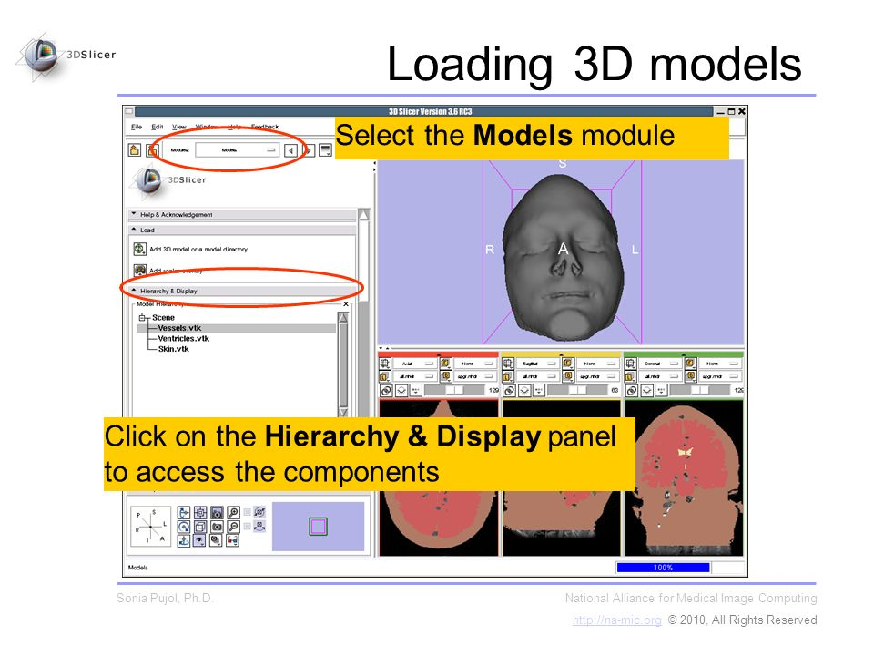 Click on the Hierarchy & Display panel to access the components Select the Models module National Alliance for Medical Image Computing http://na-mic.orghttp://na-mic.org © 2010, All Rights Reserved Sonia Pujol, Ph.D.