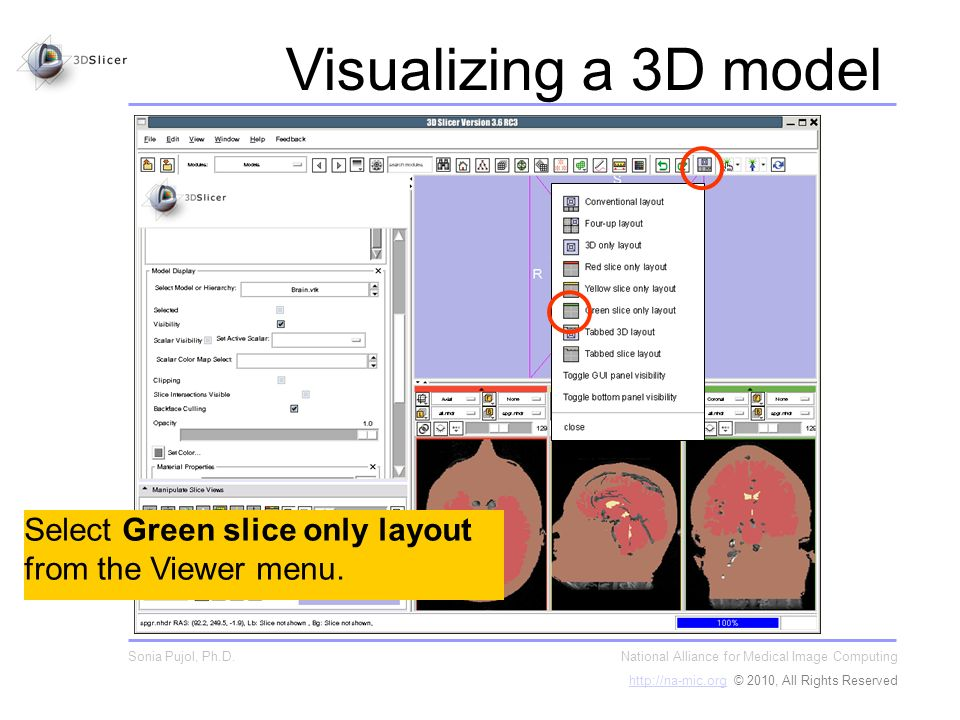 Select Green slice only layout from the Viewer menu.