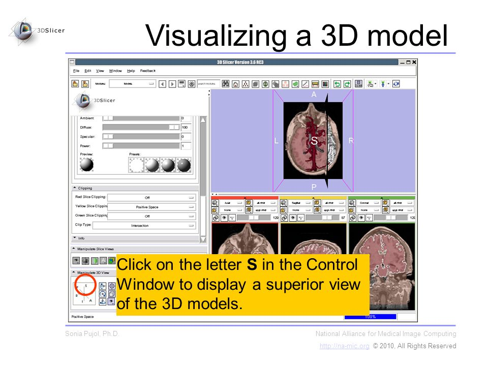 Click on the letter S in the Control Window to display a superior view of the 3D models.