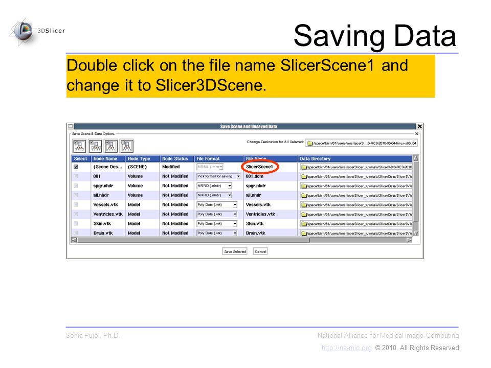 Double click on the file name SlicerScene1 and change it to Slicer3DScene.