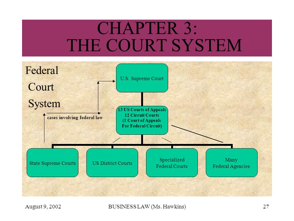 August 9, 2002BUSINESS LAW (Ms. Hawkins)27 CHAPTER 3: THE COURT SYSTEM Federal Court System cases involving federal law