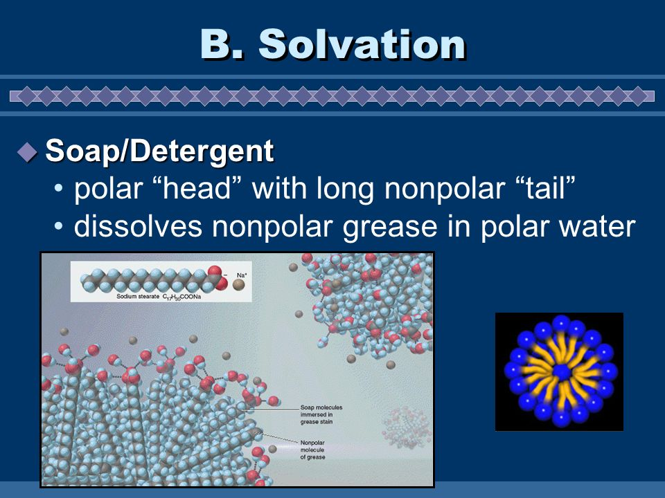 B. Solvation Soap/Detergent Soap/Detergent polar head with long nonpolar tail dissolves nonpolar grease in polar water