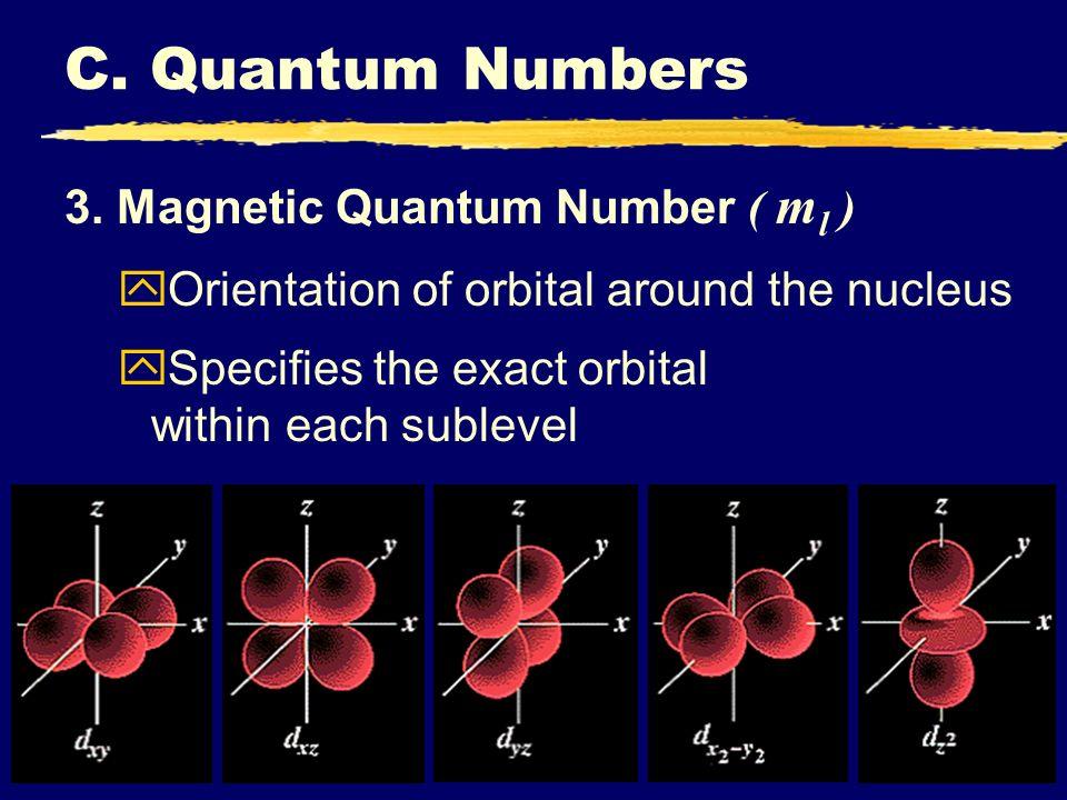 C. Quantum Numbers 3. Magnetic Quantum Number ( m l ) yOrientation of orbital around the nucleus Specifies the exact orbital within each sublevel