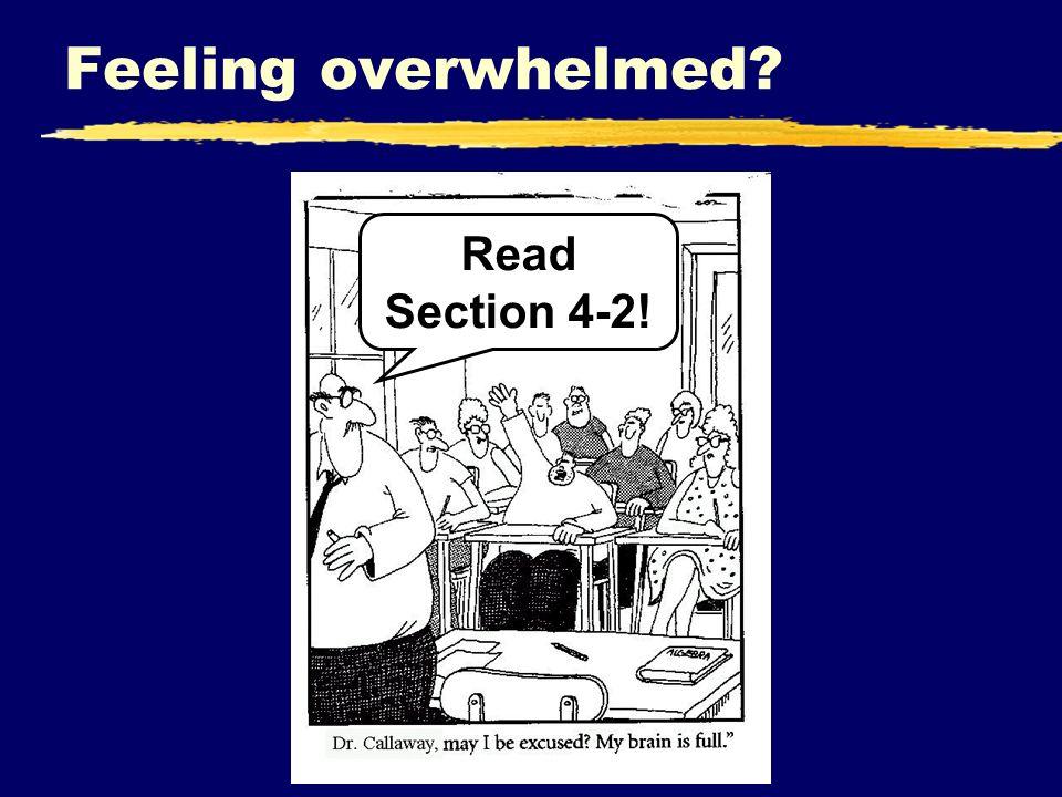Feeling overwhelmed? Read Section 4-2!