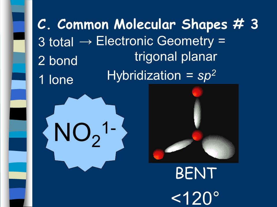 C. Common Molecular Shapes # 3 3 total 2 bond 1 lone BENT <120° NO 2 1- Electronic Geometry = trigonal planar Hybridization = sp 2