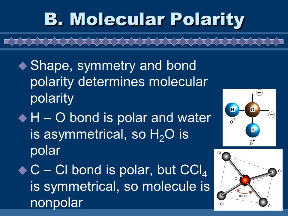 B. Molecular Polarity Shape, symmetry and bond polarity determines molecular polarity H – O bond is polar and water is asymmetrical, so H 2 O is polar