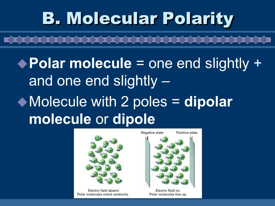 B. Molecular Polarity Polar molecule = one end slightly + and one end slightly – Molecule with 2 poles = dipolar molecule or dipole