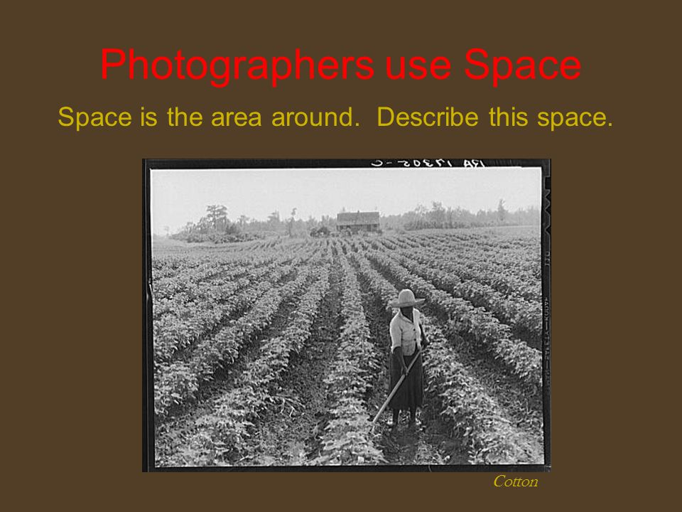 Photographers use Space Space is the area around. Describe this space. Cotton