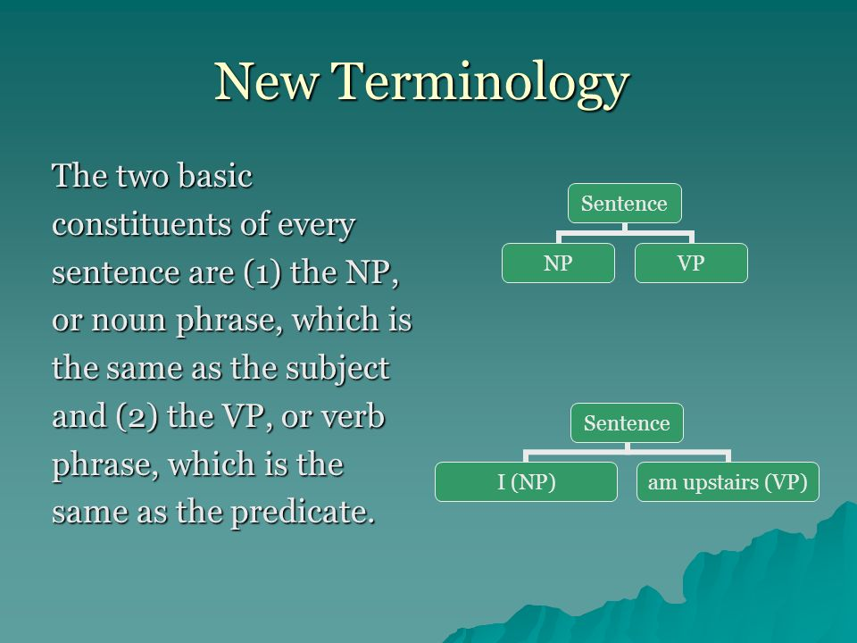 Additional Terminology Phraseany group of two or more words that function as a unit within a sentence.