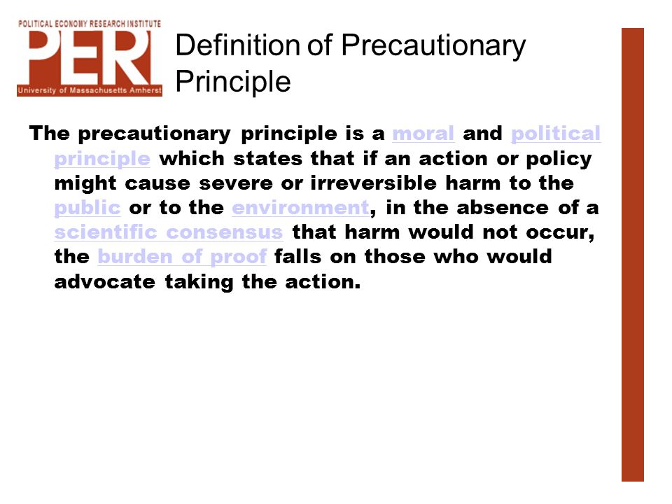 Definition of Precautionary Principle The precautionary principle is a moral and political principle which states that if an action or policy might ca