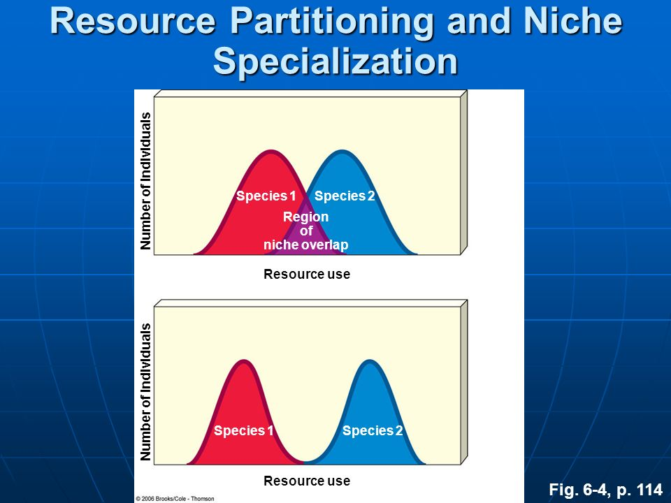 Fig. 6-4, p. 114 Number of individuals Resource use Species 1Species 2 Region of niche overlap Species 1Species 2 Resource Partitioning and Niche Spec