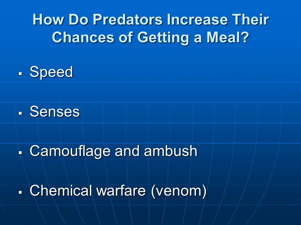 How Do Predators Increase Their Chances of Getting a Meal? Speed Speed Senses Senses Camouflage and ambush Camouflage and ambush Chemical warfare (ven